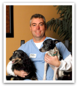 Team member Jim with his two dogs